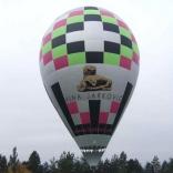 Balloon s/n 791