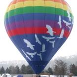 Balloon s/n 793