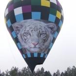 Balloon s/n 801
