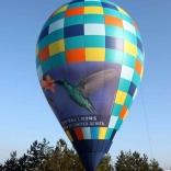 Balloon s/n 826