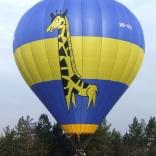 Balloon s/n 884