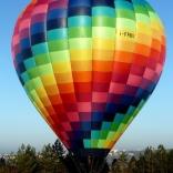 Balloon s/n 891