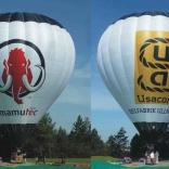 Balloon s/n 916
