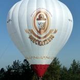Balloon s/n 931