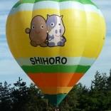 Balloon s/n 1012