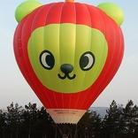 Balloon s/n 1124