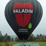 Balloon s/n 1194