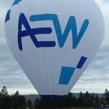Balloon s/n 1208