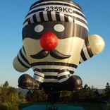 Balloon s/n 1255