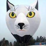 Balloon s/n 1291