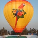 Balloon s/n 1303