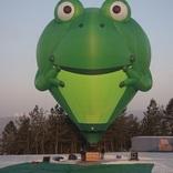 Balloon s/n 1305