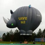 Balloon s/n 1366