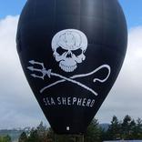Balloon s/n 1377