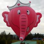 Balloon s/n 1386