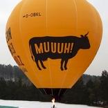 Balloon s/n 1417