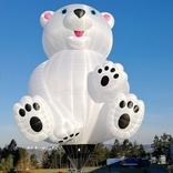 Balloon s/n 1427