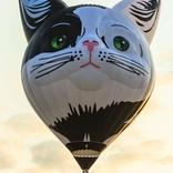 Balloon s/n 1476