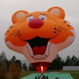 Balloon s/n 1486