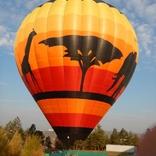 Balloon s/n 1493