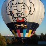 Balloon s/n 1590