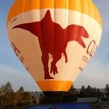 Balloon s/n 1687