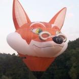Balloon s/n 207