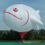 Balloon s/n 845