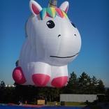 Balloon s/n x1679