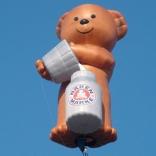 bear_04