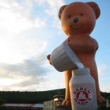 bear_12