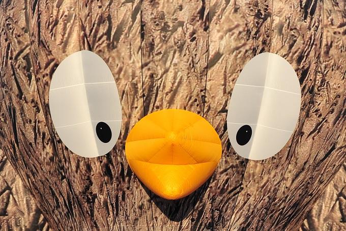 Dimitri Bird